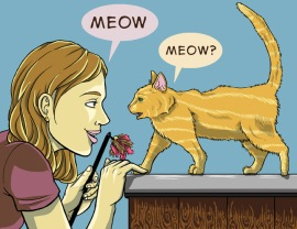 Communicate-with-Your-Cat-Step-3