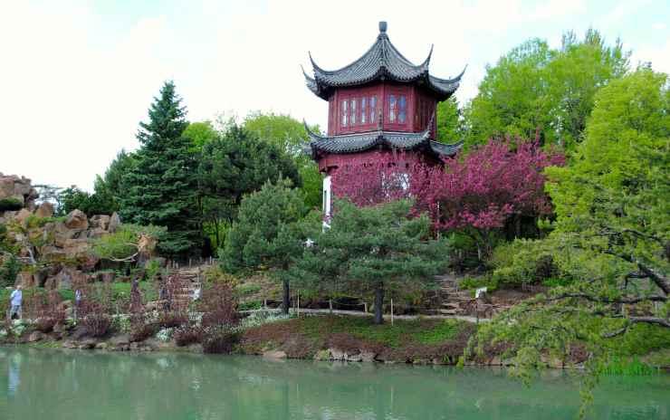 Китайката градина